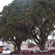 Andahuaylillas 3